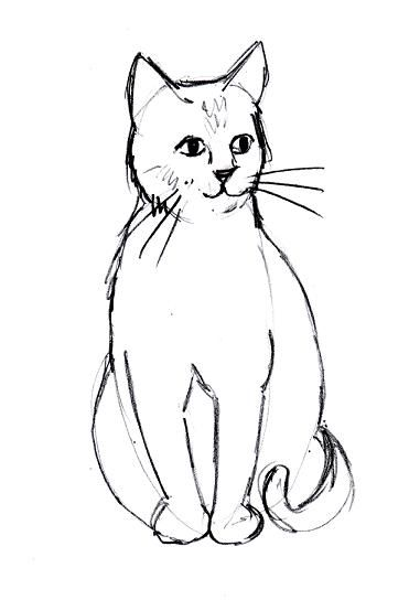 371x544 The Best Simple Cat Drawing Ideas On Anime Cat