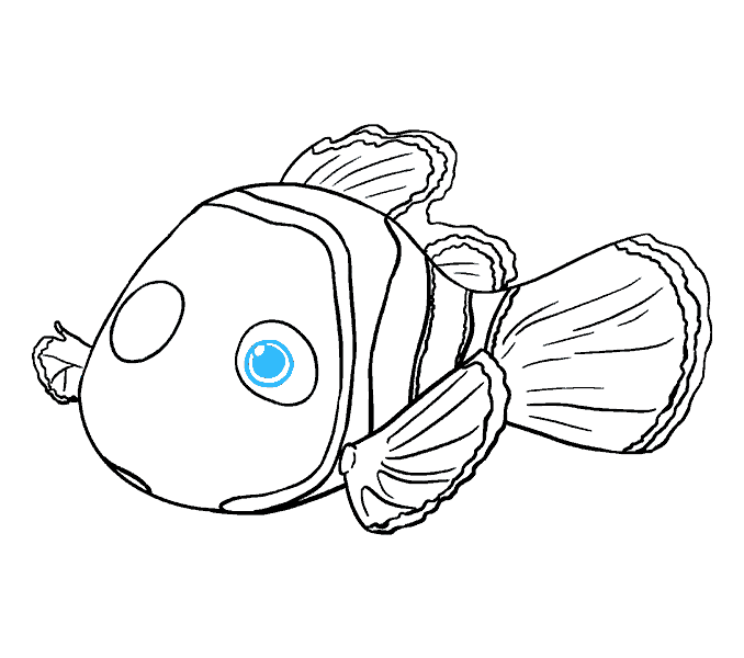 678x600 How To Draw Nemo In A Few Easy Steps Easy Drawing Guides