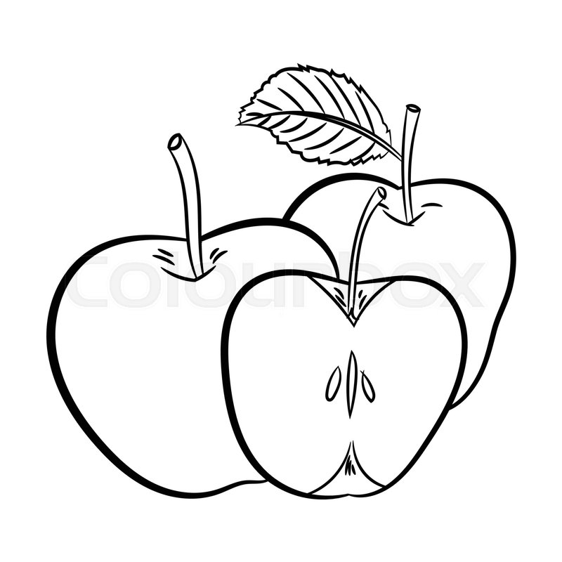 800x800 Hand Drawn Sketch Of Apples Isolated, Black And White Cartoon
