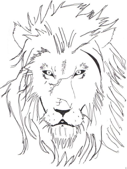 536x714 Lion Line Art By Speakredtext