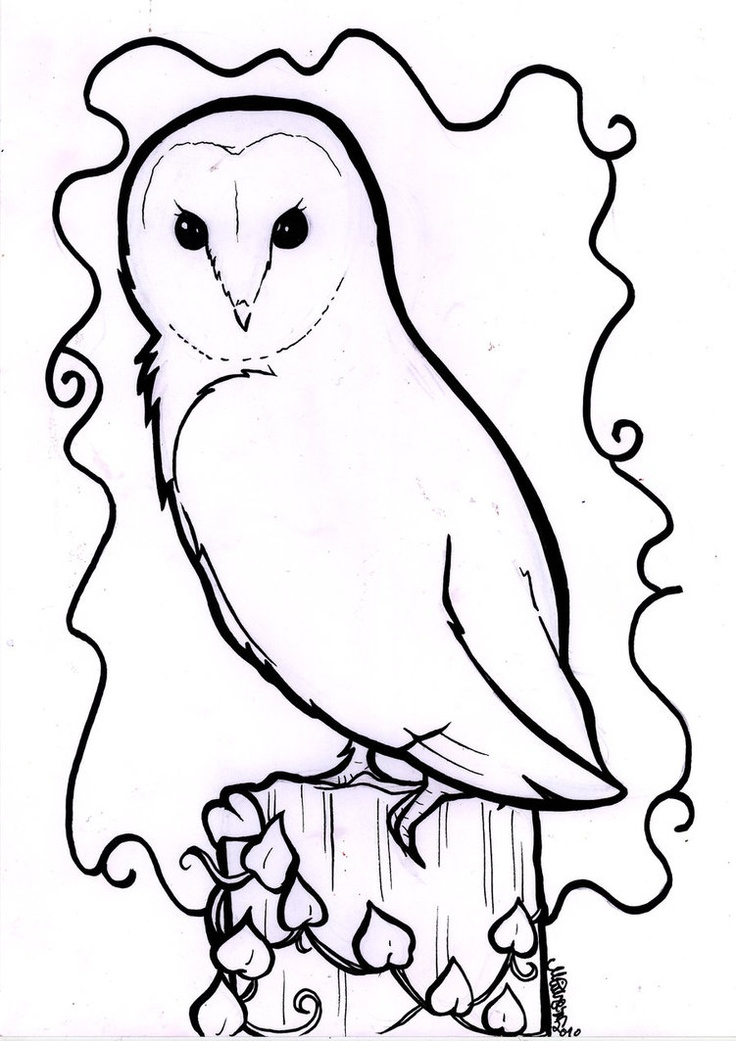 736x1041 Owl Line Drawing Barn Owl Line Drawing Tattoos Owl Love