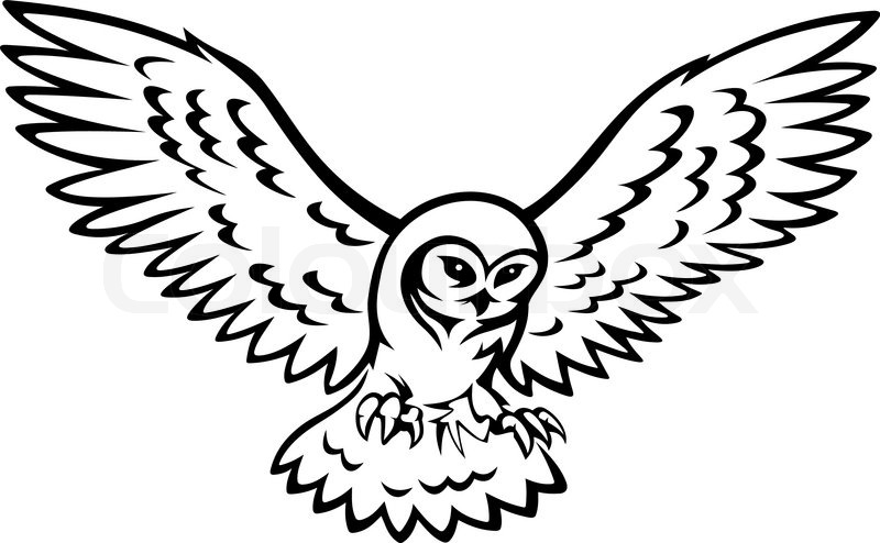 Line Drawing Of Owl at GetDrawings | Free download