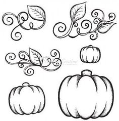 236x239 Pumpkin Drawing Thanksgiving Pumpkin Drawing