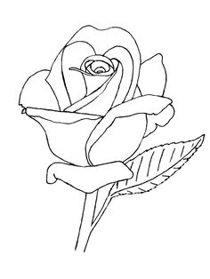 236x314 How To Draw A Rose Bud, Rose Bud, Step By Step, Flowers, Pop