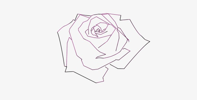 650x332 Rose,line Drawings, Rose, Line Drawings, Line Png And Psd File