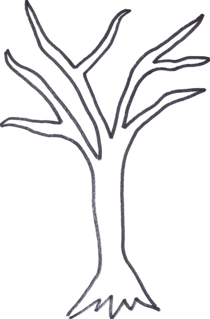 736x1117 The Best Tree Outline Ideas On Simply Image