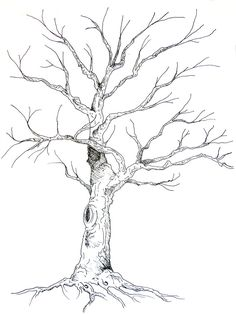 236x314 Pictures Drawings Of Trees,