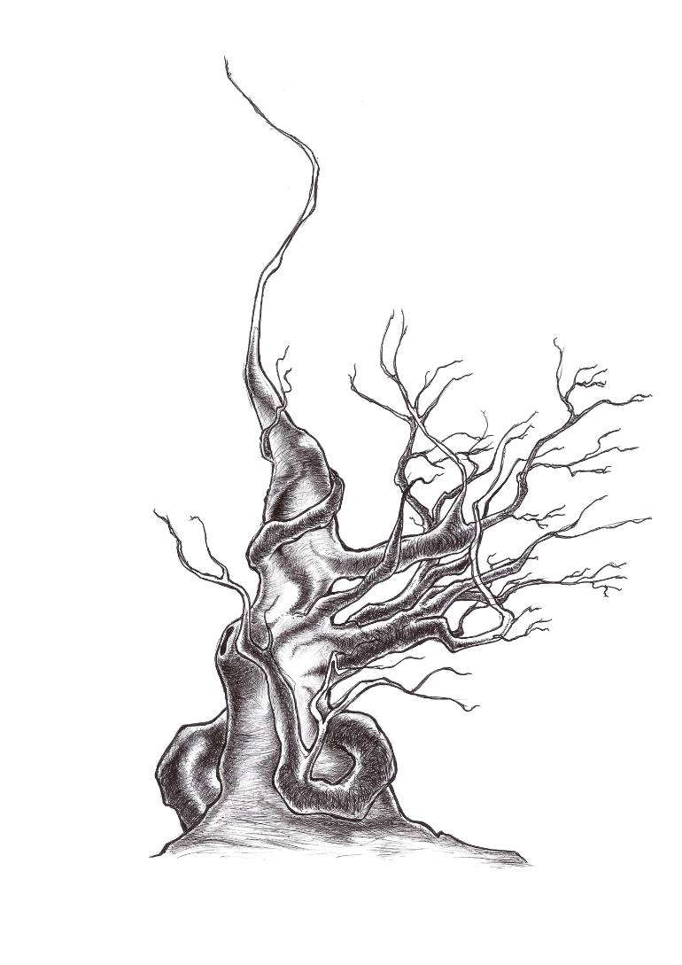 770x1089 Saatchi Art Trees Without Leaves 2 Drawing By Solutin One