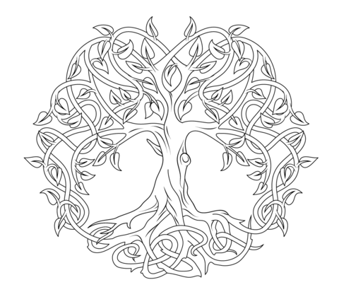 480x413 Tree Of Life Coloring Book Blank Tree
