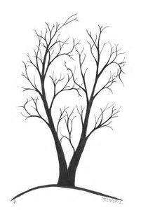 201x300 Tree Line Drawing Tree Line Art Tree Lineart For Background By