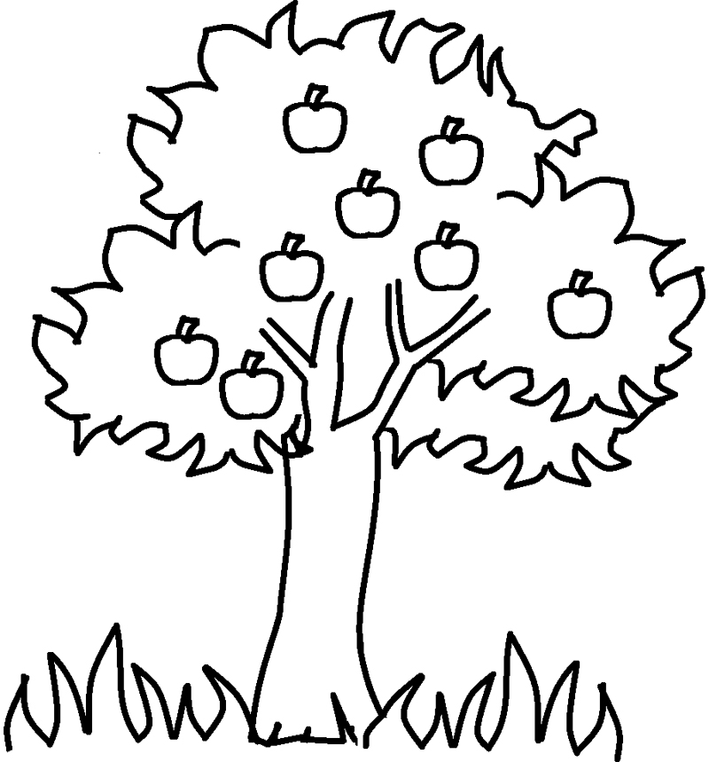 800x859 Coloring Pages Of Trees