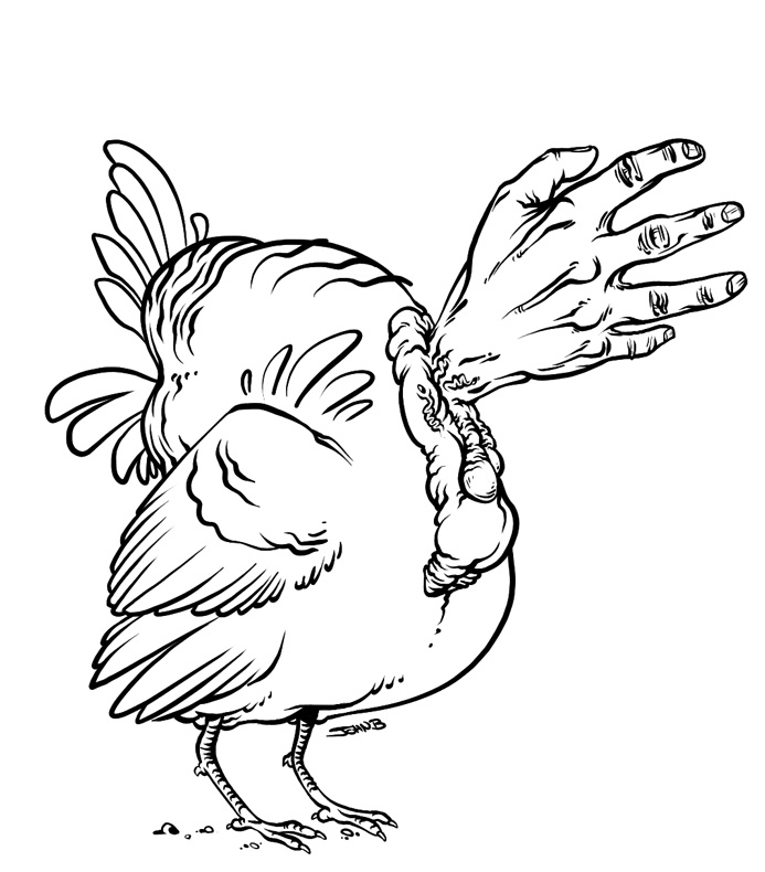 693x790 Turkey Drawing Template Free Download