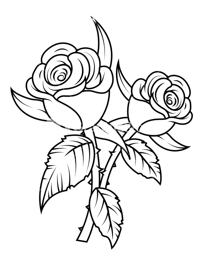 line drawing roses at getdrawings com free for personal use line rh getdrawings com rose flower line art rose line art pattern