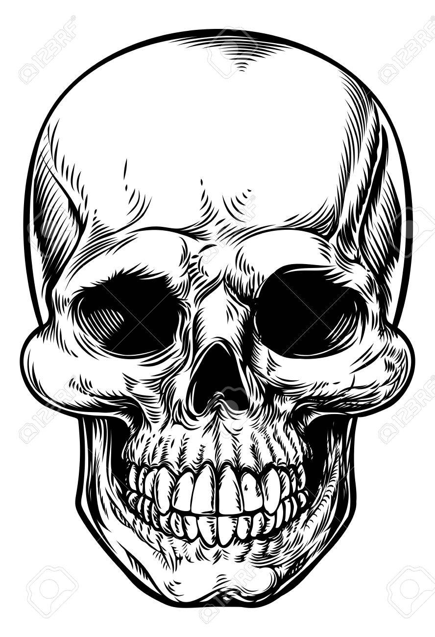888x1300 Skull Drawing In A Vintage Retro Woodcut Etched Or Engraved Style