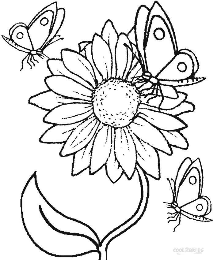 line drawing sunflower at getdrawings com free for personal use