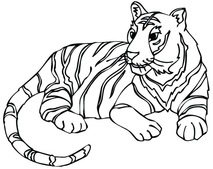 700x556 Tiger Printable Coloring Pages Tiger Template Kids Drawing Tiger