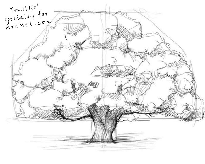 700x560 How To Draw An Oak Tree Step By Step