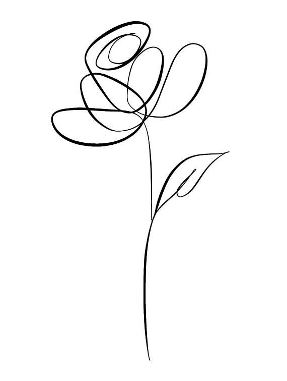 570x755 Botanical Line Art Botanical Line Drawing Line Art Print