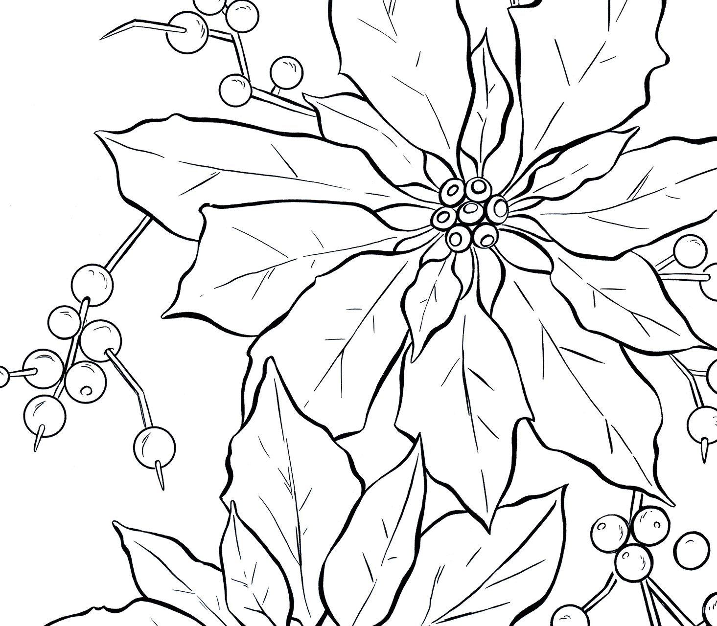 1465x1280 Poinsettia Line Art