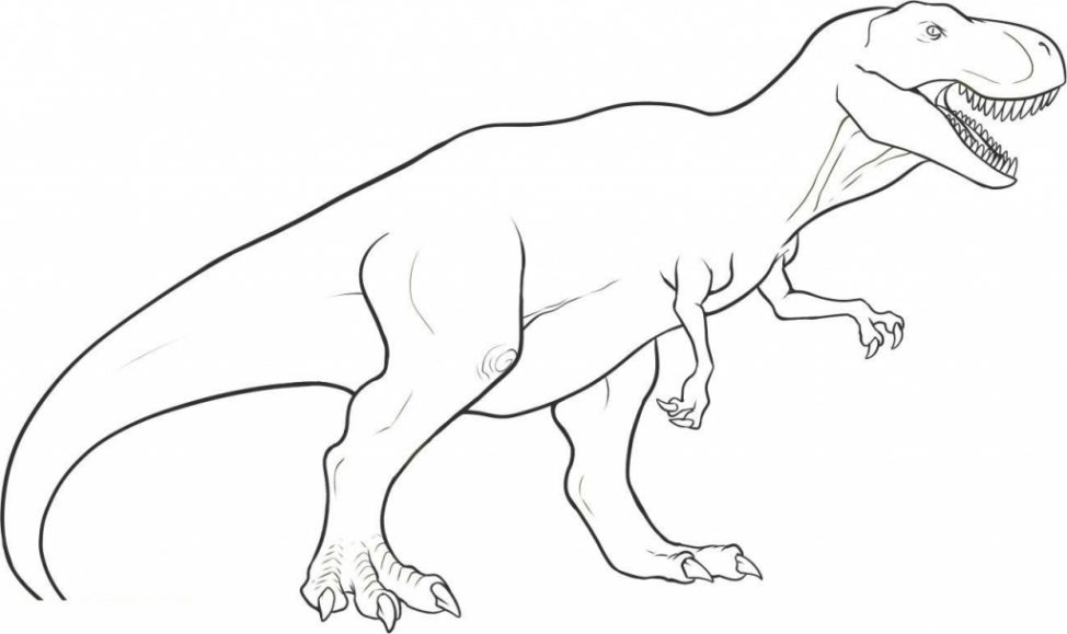 974x579 Coloring Pages Easy Dinosaur Drawings Drawing How To Draw Trex