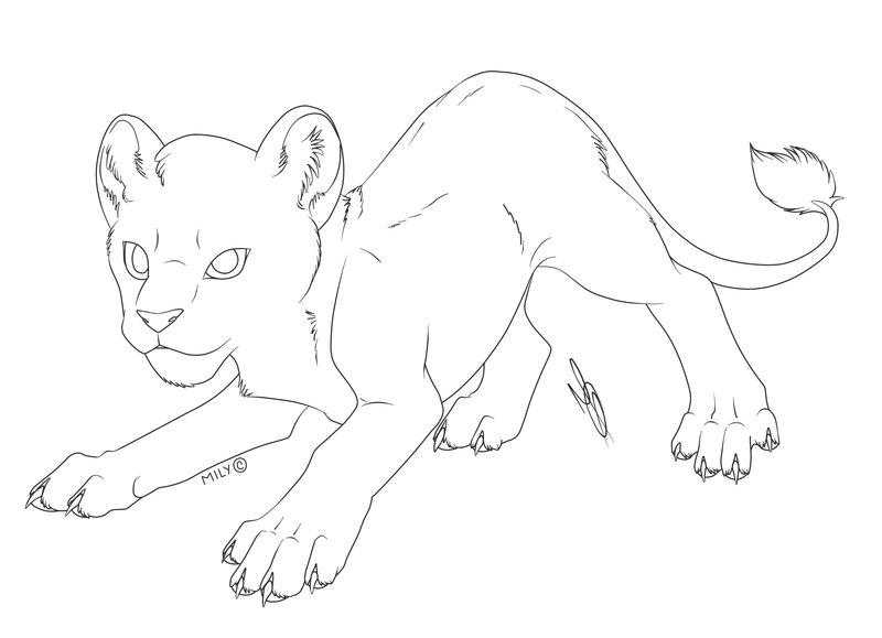 800x579 Free Use Cub Lion By Nightpunkm