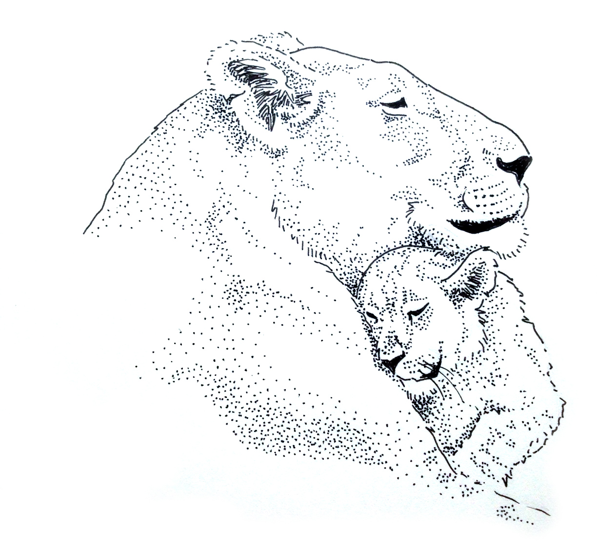 1224x1126 Lioness And Her Cub