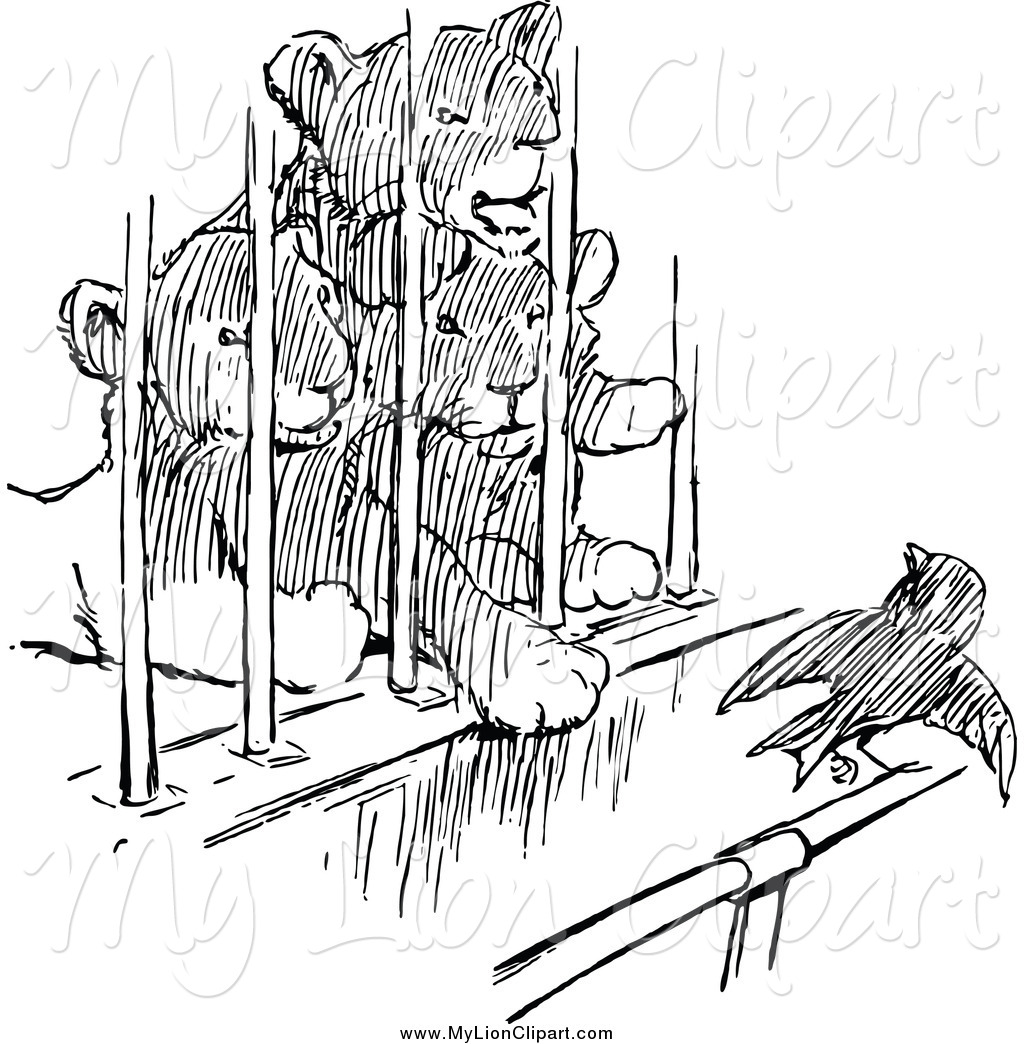 1024x1044 Clipart Of Black And White Lion Cubs Watching A Bird From A Cage