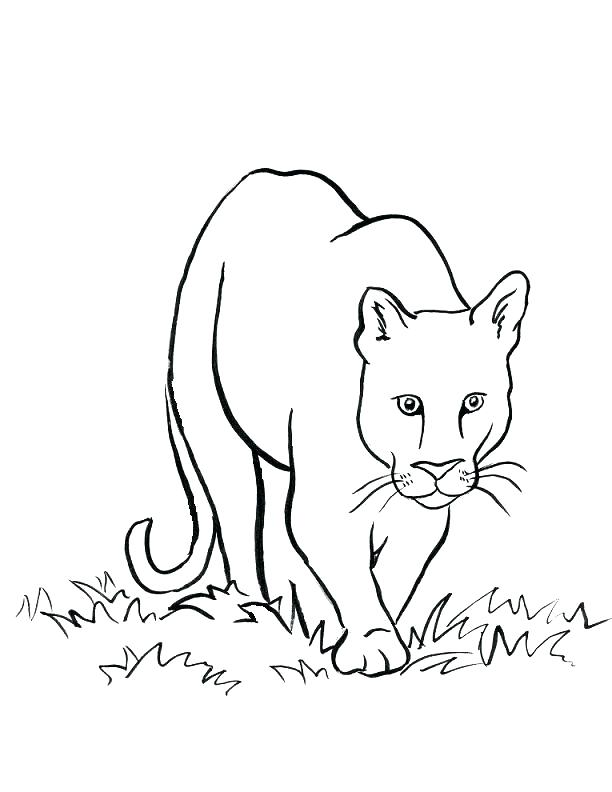 612x792 Lion Coloring Pages Lamb And Lion Coloring Page Free Printable