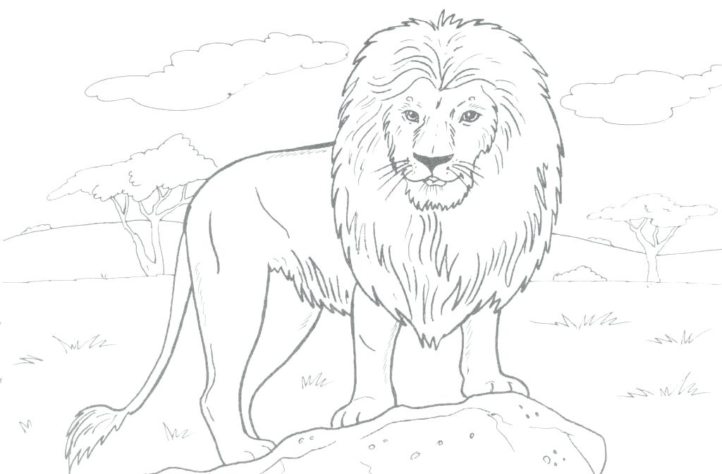 1024x672 Lion Coloring Pages Lion Lamb Coloring Page Kids Drawing And Pages