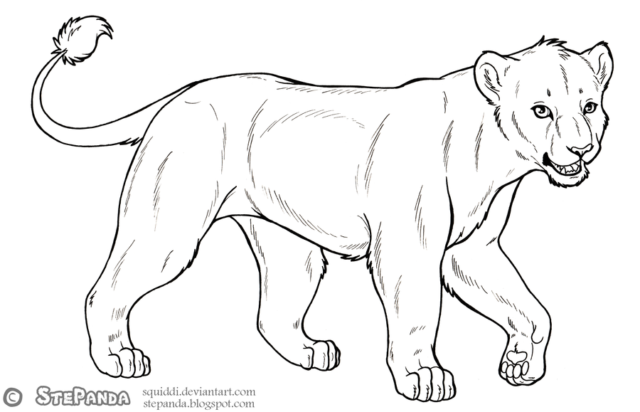 900x579 Free Lineart Adult Lioness 2 By Stepandy
