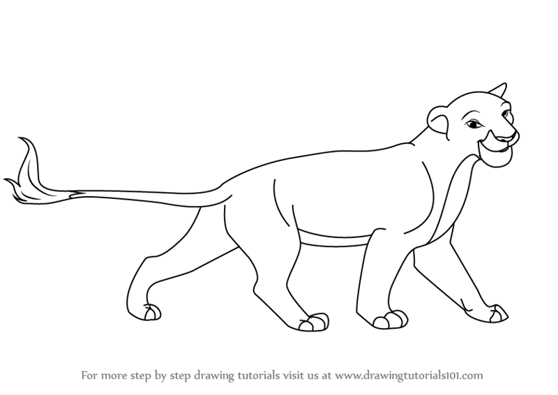 800x566 Learn How To Draw Sarabi From The Lion King (The Lion King) Step