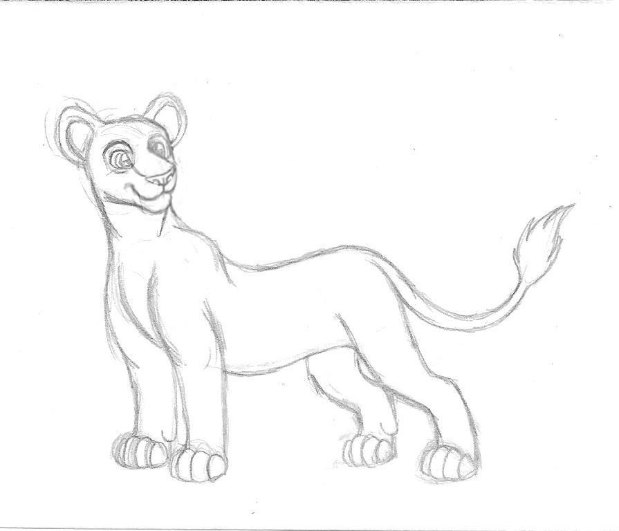 895x768 Lion King Lioness Free Sketch By Cassandramarteena