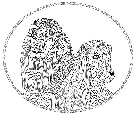 450x382 Lion And Lioness Stock Vectors