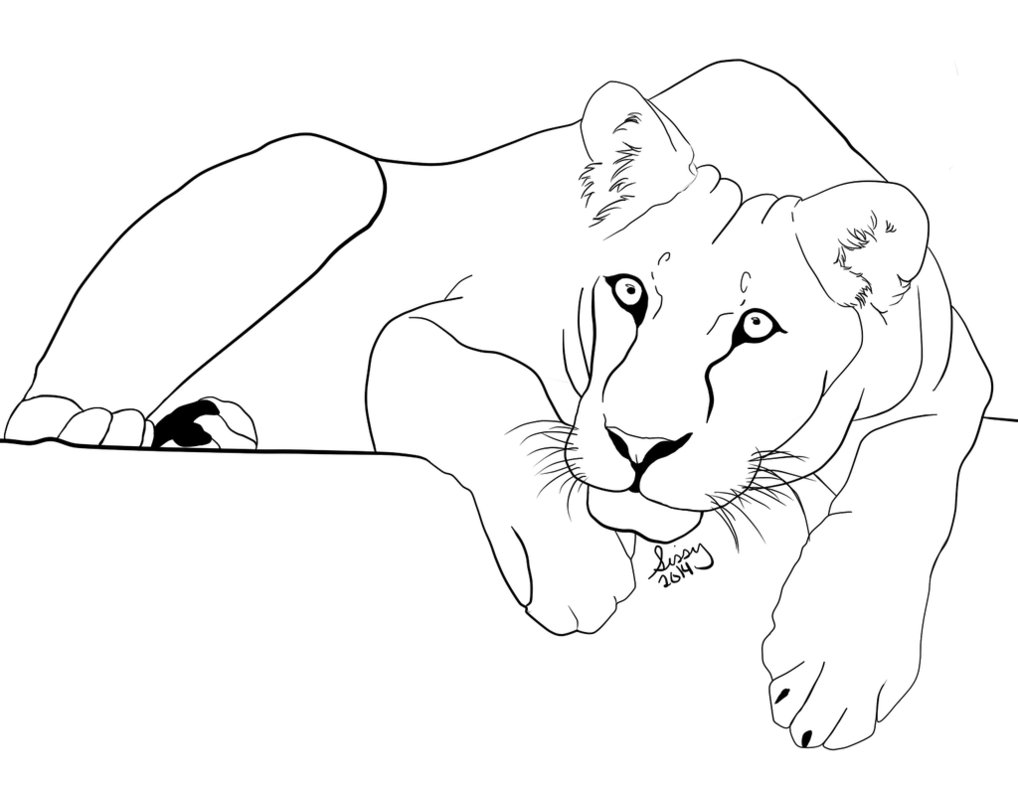 1018x785 Lying Down Lioness By Vanitarianism