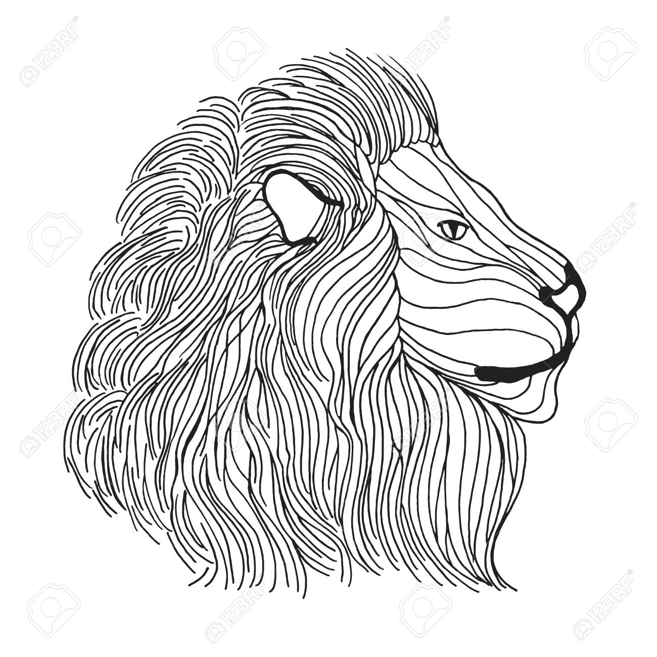 1300x1300 Lion Head. Adult Antistress Coloring Page. Black White Hand Drawn