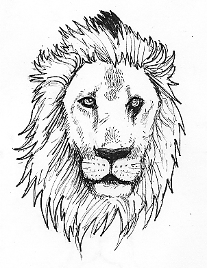 302x392 82 Famous Lion Tattoo Design Amp Sketches