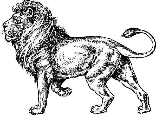 600x442 Lion Clip Art Free Vector In Open Office Drawing Svg ( Svg