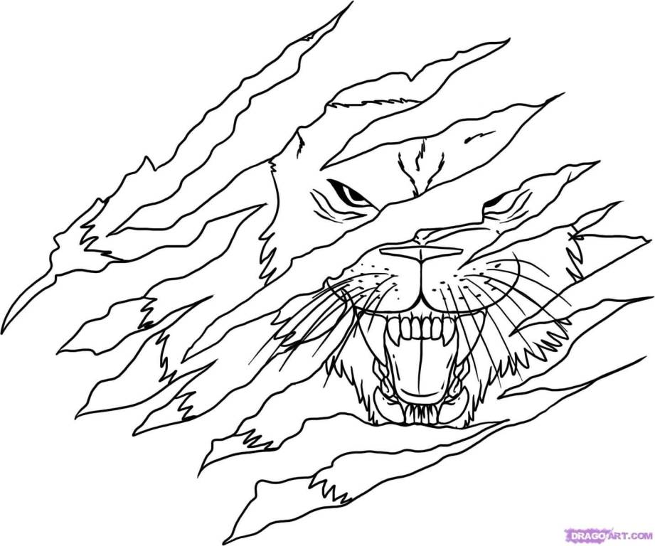921x768 Beautiful Lion Tattoo In Claw Outline