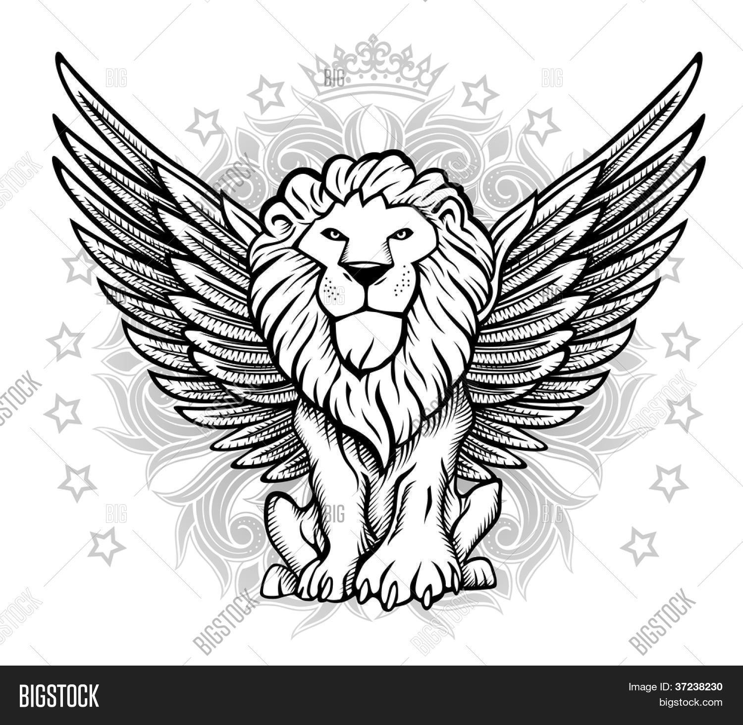 1500x1464 Winged Lion Front View Drawing Vector Amp Photo Bigstock