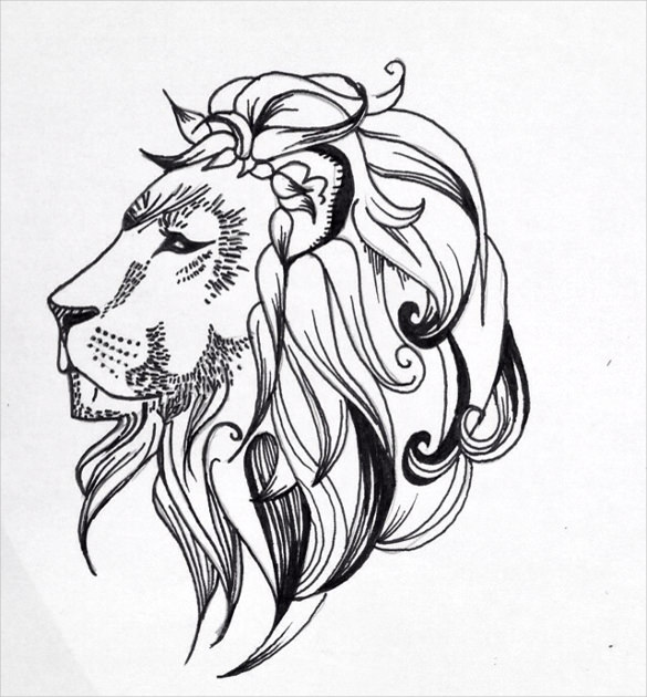 585x630 Collection Of Lion Tattoo Drawing
