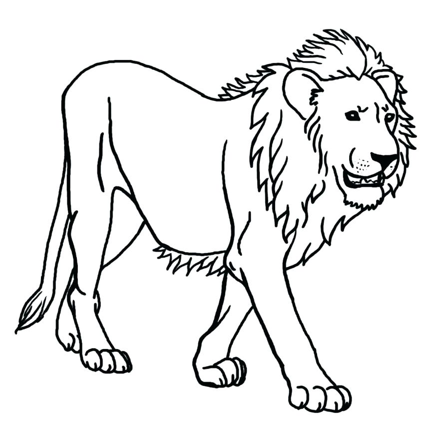 863x863 Lion Color Sheet Medium Size Of Coloring Sheet Lion Guard Coloring
