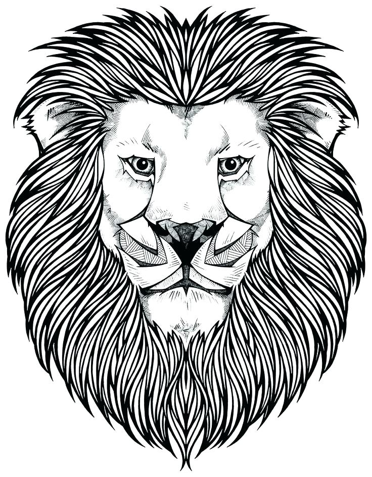 736x944 Coloring Pages Lion Free Coloring Pages Coloring Pictures