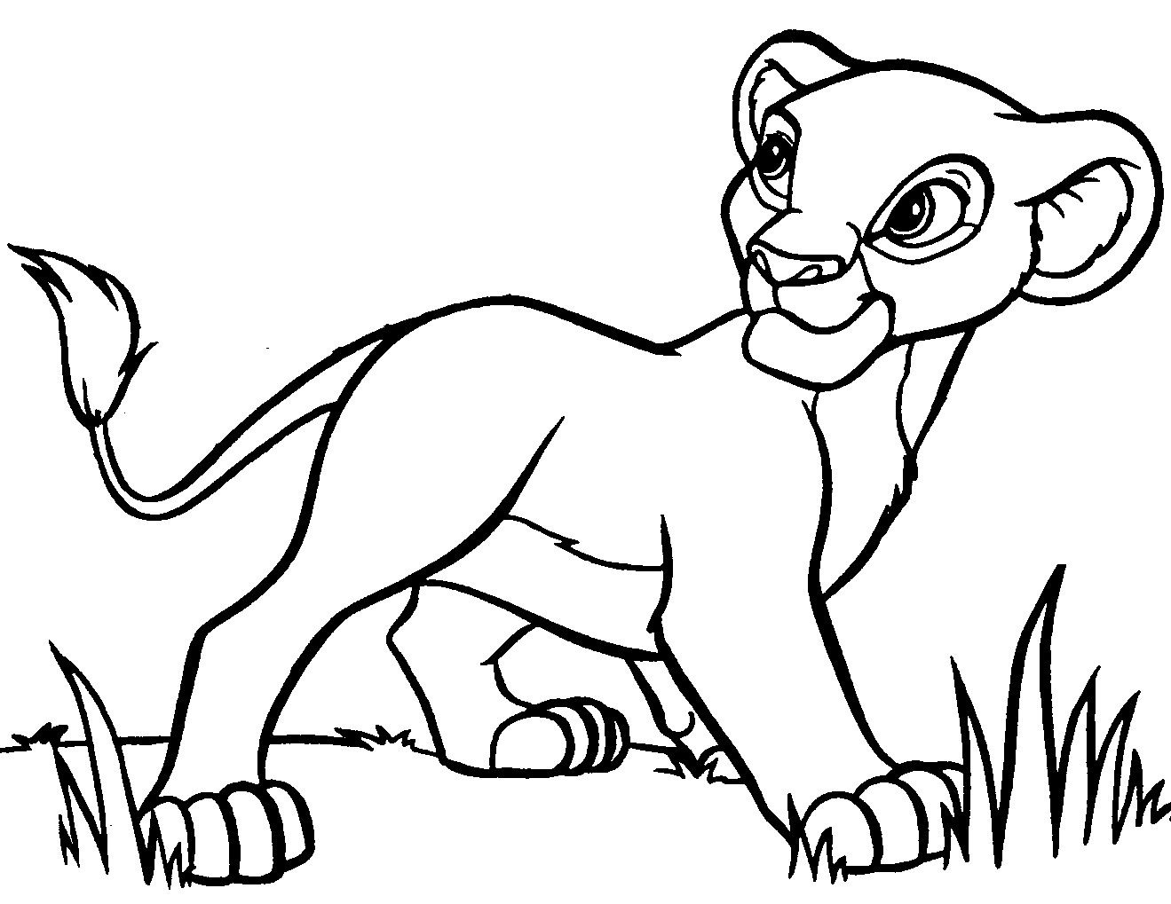 Lion Cub Drawing at GetDrawingscom Free for personal use Lion Cub