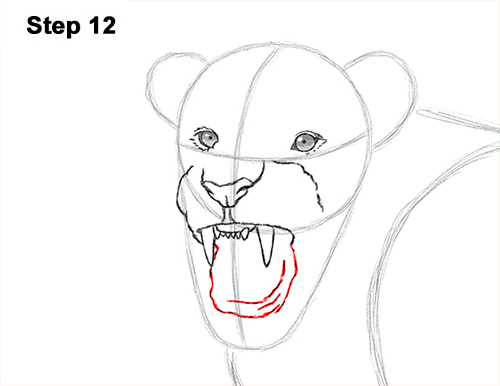 500x386 How To Draw A Lion Roaring