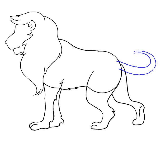 678x600 How To Draw A Lion Step By Step. How To Draw A Lion Easy Step By