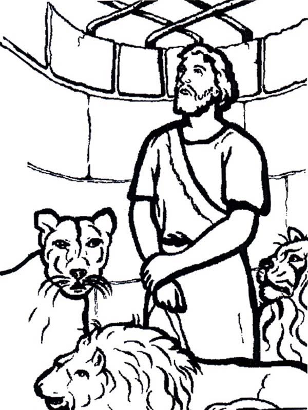 600x800 Daniel Looking Up To Cage Door In And The Lions Den