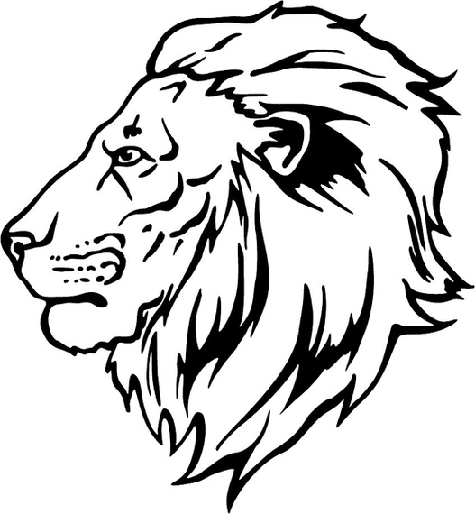 527x570 Lion Drawing Cliparts