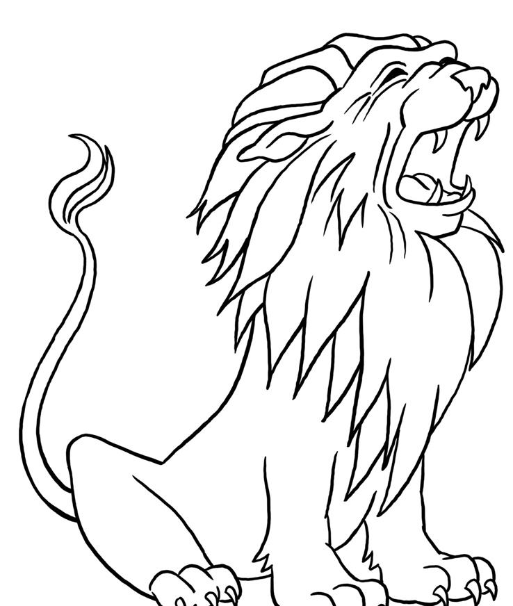 738x872 Lion Sitting Down Drawing