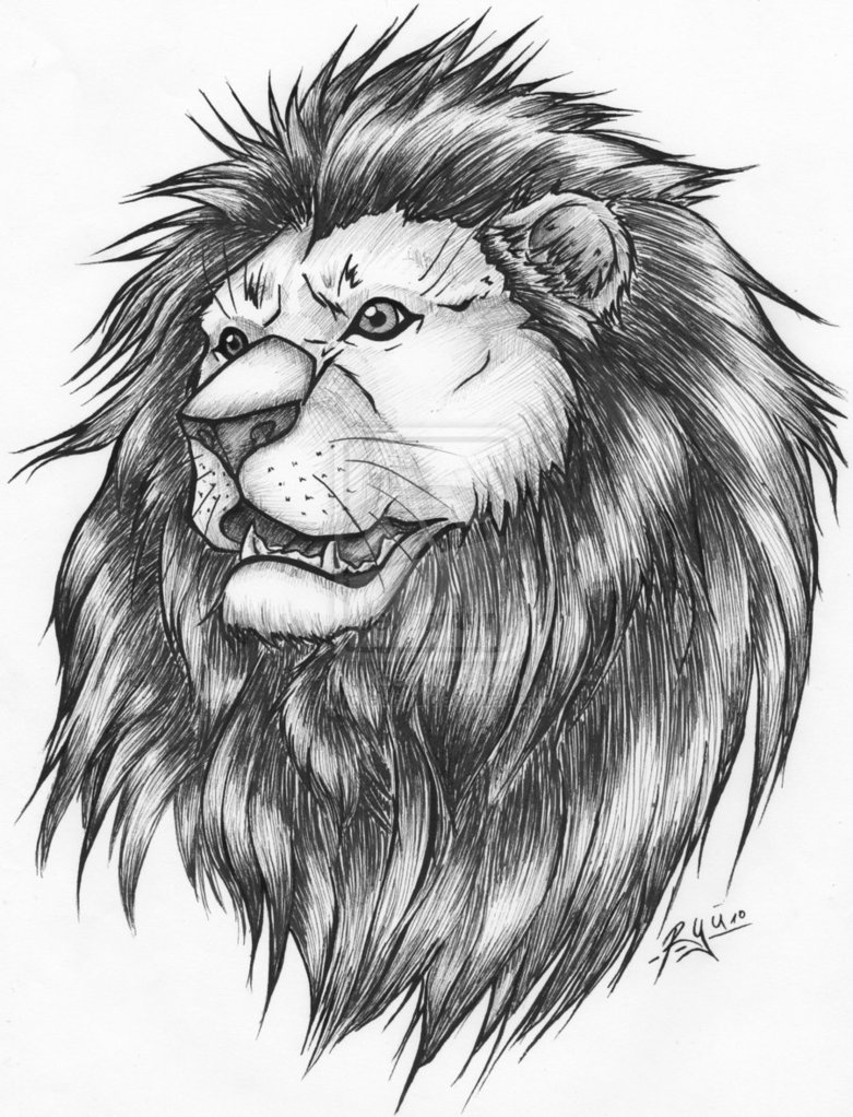 781x1022 Collection of 25+ Lion Tattoo Drawing