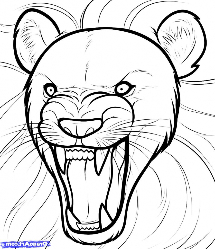 883x1024 Easy Drawing Of Lion How To Draw A Lion Roaring Roaring Lion Step